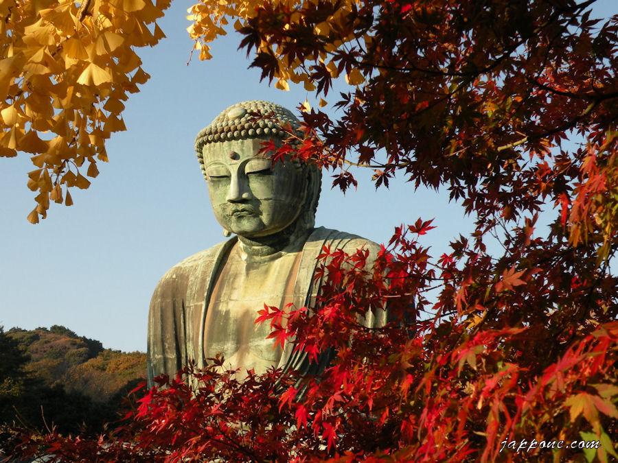 Буда няма форма, той се проявява чрез съвършенството и ни води с изпълнено със състрадание сърце.